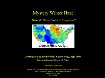 Mystery Winter Haze: - Capita