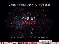 Pakiet GIGANT - Gazeta.pl