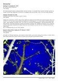N R . 2 · N O V E M B E R 2 0 0 7 · Å R G A N G 1 - Sthens Kirke - Page 7