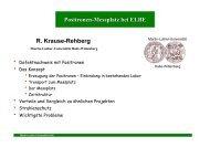 Positronen-Messplatz bei ELBE - Positron Annihilation in Halle ...