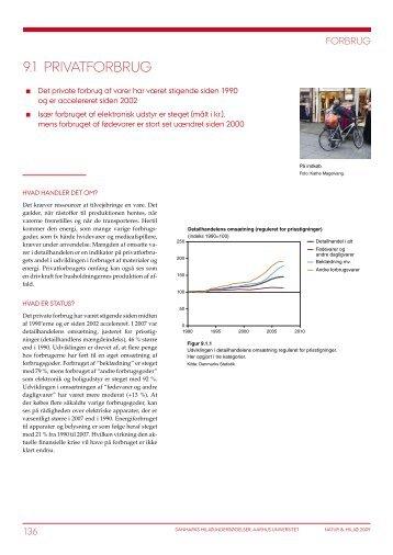 Natur og Miljø 2009. Del B: Fakta. Tema 9 Forbrug