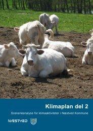 Læs scenarierapporten (PDF fil) - Næstved Kommune