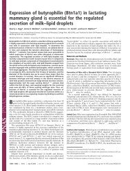 Expression of butyrophilin (Btn1a1) in lactating mammary gland is ...