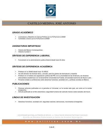 castillo medina, josé antonio - Centro de Estudios Sociológicos ...