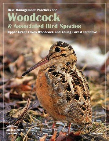 Associated Bird Species - Timberdoodle.org