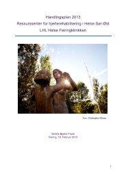 Handlingsplan 2013 (pdf) - LHL