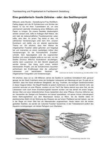 Eine gestalterisch- fossile Zeitreise - oder: das ... - Steinkern