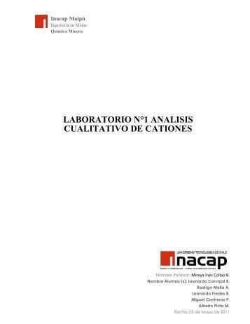 Informe de Laboratorio Cualitativo ejemplo de marcha analítica.