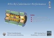 ATLAS Calorimeter Performance - IRTG Heidelberg