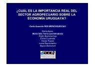 Importancia del sector agropecuario en la economía uruguaya