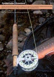 Fiskeri efter fjeldørreder på Grønland 2009 - fiskpaaflue.dk