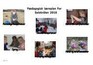 Pædagogisk læreplan for Solstrålen 2010 - Viborg Kommune