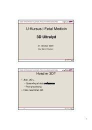 U-Kursus i Føtal Medicin 3D Ultralyd - Forside