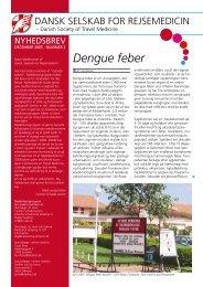 Nyhedsbrev 2: december 2005 - Tema: Dengue feber