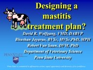 Holstein steers hyperimmunized - Veterinary and Biomedical ...