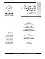Biodiversity in the Forests of Maine: Guidelines for Land ... - Maine.gov