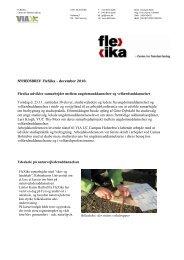Nyhedsbrev - dec 2010.pdf