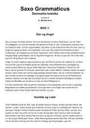 SAXOs DANMARKSKRØNNIKE - 1. BOG