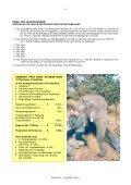 ELEFANT - Page 3