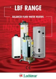 Balanced Flue Direct Vent Residential Gas Water Heaters