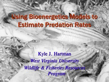 Using Bioenergetics Models to Estimate Predation Rates - CALFED ...