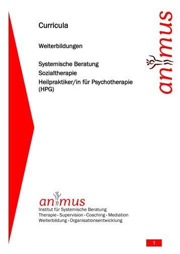 Curriculum - animus