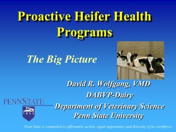 Proactive Heifer Health Programs Proactive Heifer Health Programs