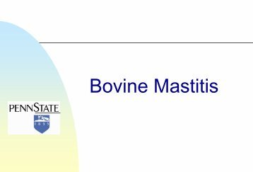 Bovine Mastitis - Veterinary and Biomedical Sciences