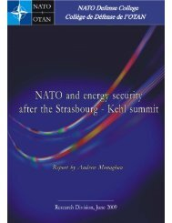 NATO and energy security after the Strasbourg-Kehl summit
