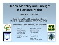 Beech Mortality and Drought In Northern Maine - The University of ...