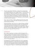 Dansk energi- og klimapolitik i globalt perspektiv - De Økonomiske ... - Page 3