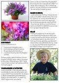 Schlumbergera FAIRYTALE FLOWERS® - Gartneriet PKM - Page 6