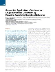 Sequential Application of Anticancer Drugs Enhances Cell Death by ...