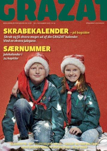 Juleopgave - Spejdernet