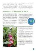 150 gode grunde til at vi skal ud i dag - Grønne Spirer - Page 7