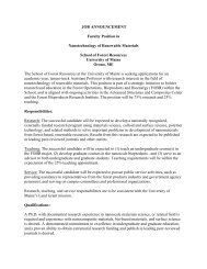 JOB ANNOUNCEMENT Faculty Position in Nanotechnology of ...