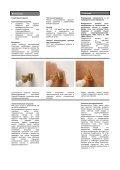 Capadecor_Arte Lasur - от Caparol - Page 2
