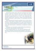 Oferta Dedal Konsulting - img1.oferia.pl - Page 2