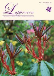 Nr. 3 - Den norske Rhododendronforening