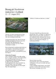 Palles rapport som pdf-fil - Sky-Box.dk