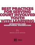 improving outcomes for youth with disabilities in the juvenile justice ... - Page 3