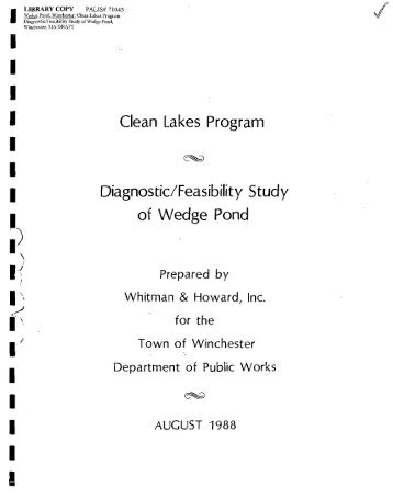 clean lakes program diagnostic_feasibility study of wedge pond
