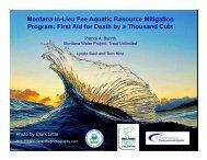 Montana In-Lieu Fee Aquatic Resource Mitigation Program: First Aid ...