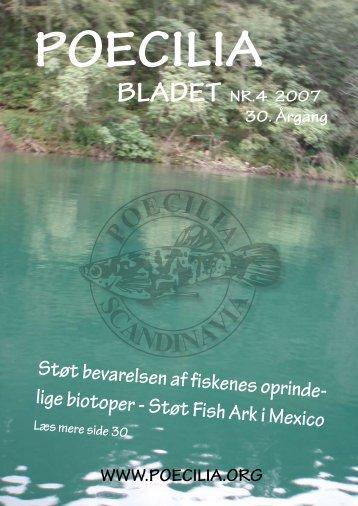 Støt Fish Ark i Mexico - Poecilia Scandinavia