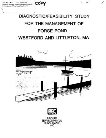 diagnostic_feasibility study for the management of forge pond ...