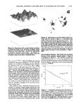 Statistical self‐similarity of magmatism and ... - Jon D. Pelletier - Page 5