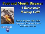 Foot and Mouth Disease: - Veterinary and Biomedical Sciences ...