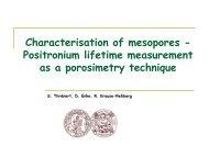Characterisation of mesopores - Positron Annihilation in Halle