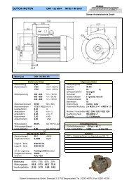 DM1 132 Mx4 B5 - Stoewer-Getriebe.de