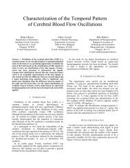 Characterization of the Temporal Pattern of Cerebral Blood Flow ...